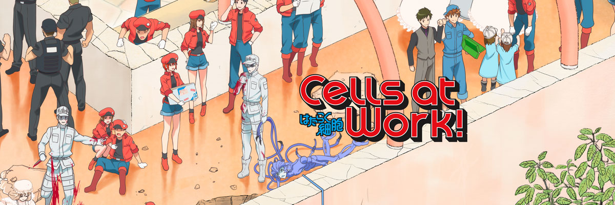 watch cells at work online free